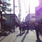 【岩田旅行記】800年の歴史・鶴岡八幡宮を歩く【鎌倉散歩】
