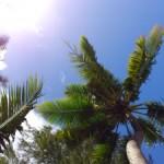 【岩田旅行記】自然が広がるビーチリゾート・サイパンへ!