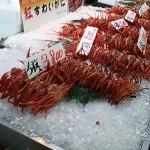 【岩田旅行記】鳥取境港の旅その3 境港水産物直売センター