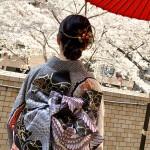 桜と成人式